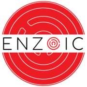 Enzoic Account Takeover Protection