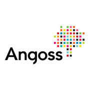 Angoss KnowledgeSTUDIO
