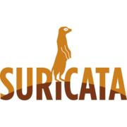 Suricata IDS