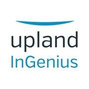 Upland Ingenius