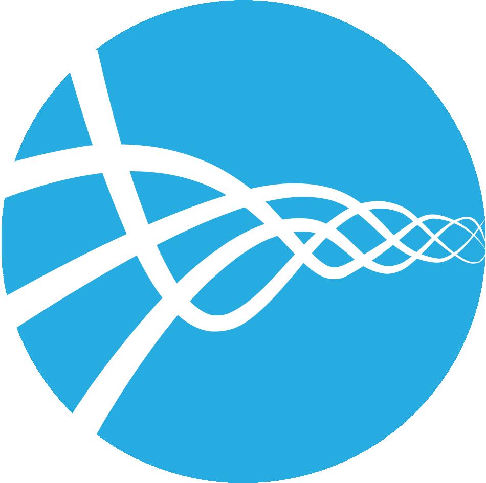 Loom Systems logo