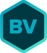 BriteVerify logo