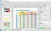 Use the Custom PDF to Excel conversion to manually adjust the column and row structure of your data for perfectly formatted Excel spreadsheets.