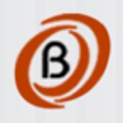 Bitochon Sales CRM Portal logo