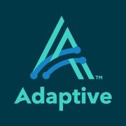 Adaptive Metadata Manager
