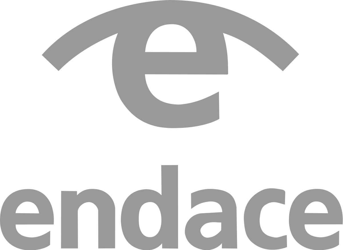 EndaceVision (formerly Emulex EndaceVision)